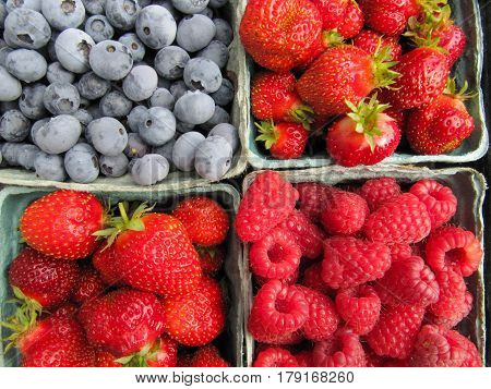 Four containers of berries, blue berries, strawberries and raspberries