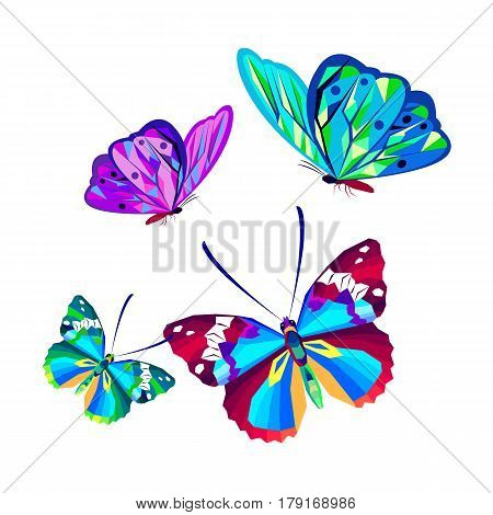 vector butterfly insect art white decorative color