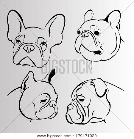 dog vector breed cute pet animal bulldog french