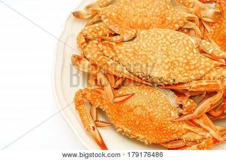 Yellow Crabs on a white plate .