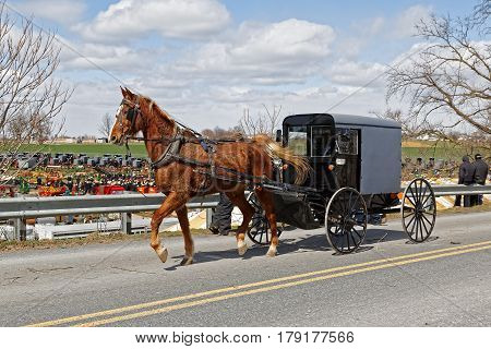 An Amish horse and carriage drives by a benefit auction (Amish mud sale) in Lancaster County Pennsylvania.