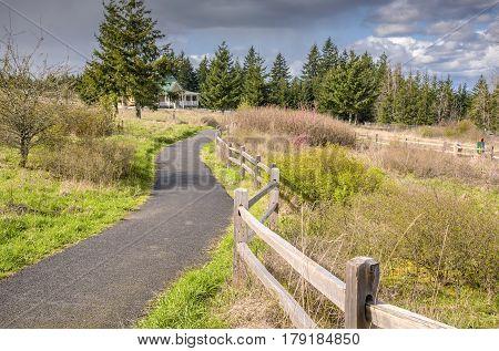 Public park and tree row in Salem Oregon.