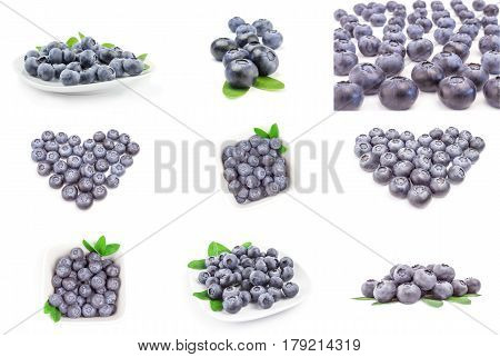 Group of bog bilberry isolated over a white background