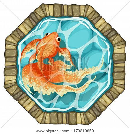 goldfish stone pond top view vector illustration