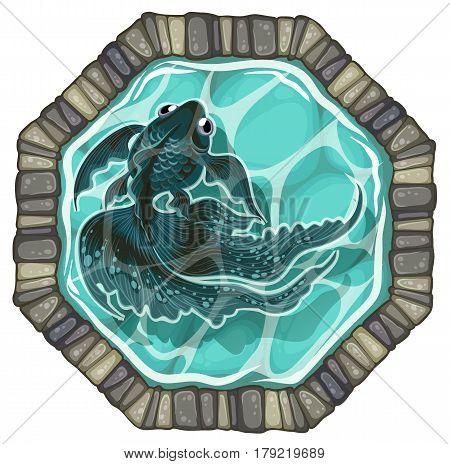 black goldfish pond top view vector illustration