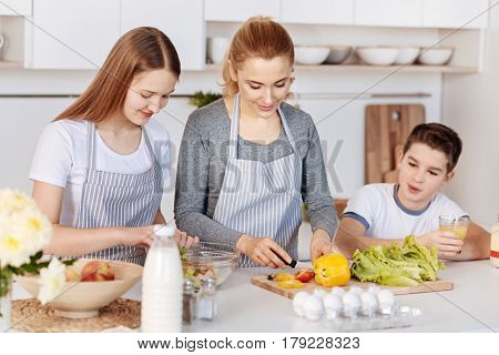 Happy family. Cheerful caring mother cooking vegetable salad with her children while standing in the kitchen and preparing breakfast
