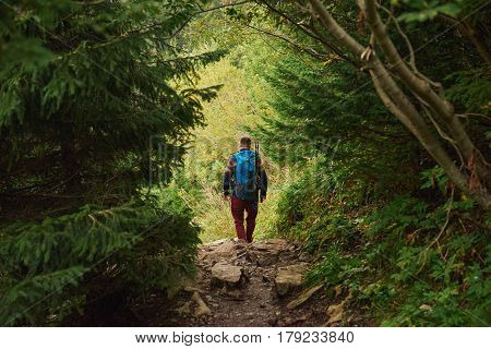 Rearview of a man in hiking gear and a backpack walking alone along a rocky path through a dense forest