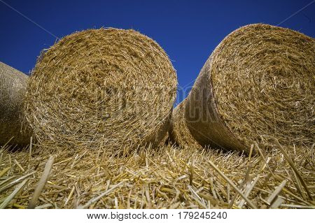cereal bales of straw