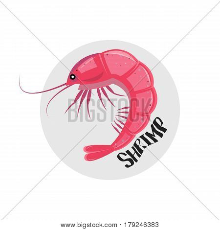 Shrimp Icon. Vector Illustration. Pink Shrimp Icon Isolated On White.
