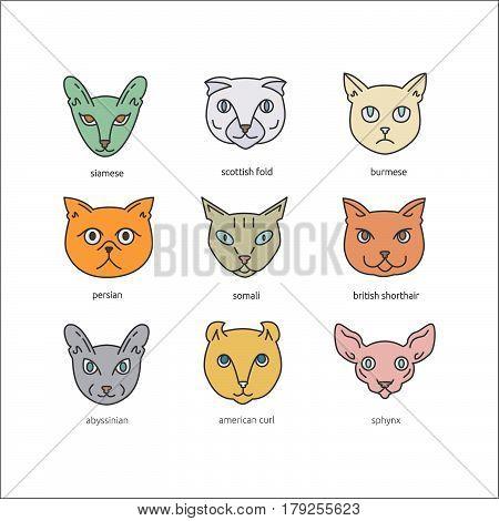 Cat Breeds Icon Set