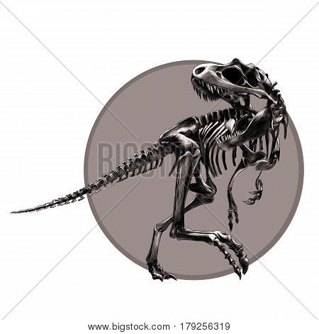 dinosaur skeleton Tyrannosaurus black and white pattern on the grey circle drawing sketch vector