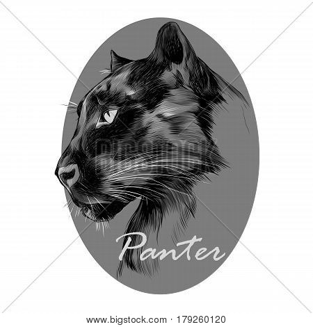 the head is black Panther's profile looking into the distance graphics sketch vector black and white pattern on the grey circle