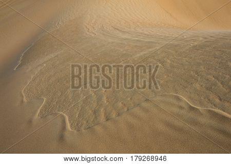 Sand dunes of Liwa desert in Abu Dhabi