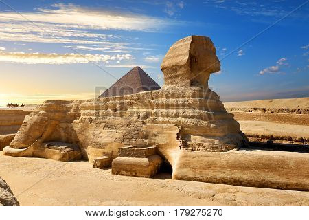 Famous egyptian sphinx in desert of Cairo