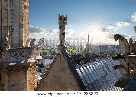Statues of Angel and Chimeras on the roof of Notre Dame de Paris, France