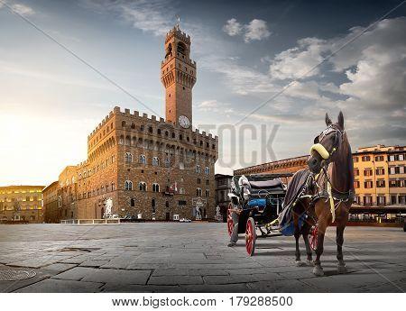 Horse on Piazza della Signoria in Florence at dawn, Italy