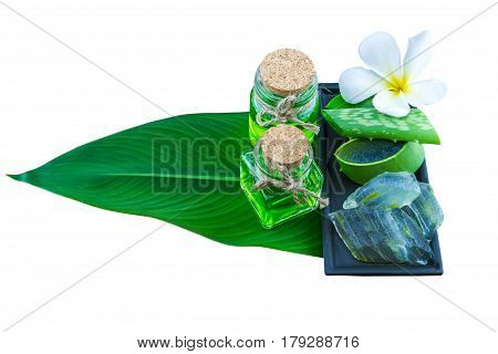 Slice Aloe Vera (Aloe barbadensis Mill.Star cactus Aloin Jafferabad or Barbados) Spa compressing ball and Aloe vera essential oil in green leaf on white. Saved with clipping path.