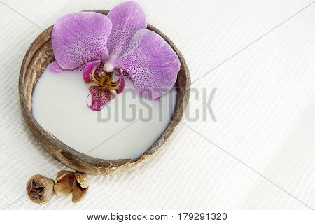 Orchid flower in milk in a coconut on a light background preparation for a spa treatment relaxing atmosphere postcard
