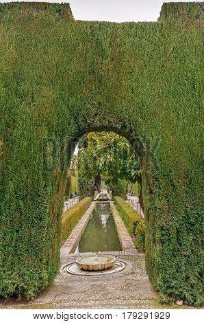 Fountain and pool in Generalife gardens Granada Spain