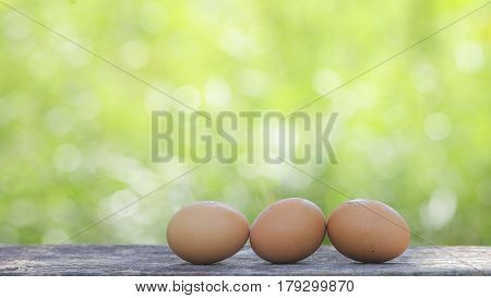 Egg On Wooden Table With Shallow Dof Green Background.