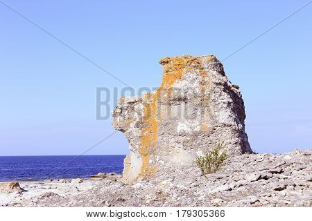 One sea stack at the Langhammars in Swedish province of Gotland.