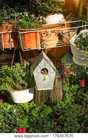 birdhouse nestles among spring flowers