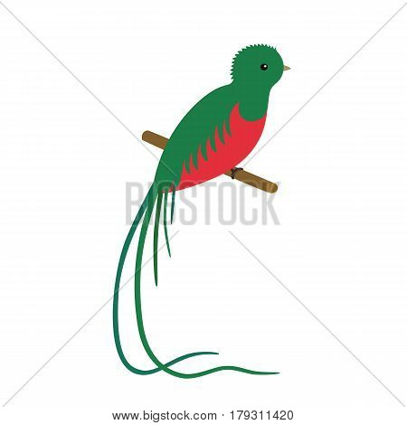 vector illustration of a resplendent quetzal pharomachrus mocinno, sitting on a branch isolated on white background