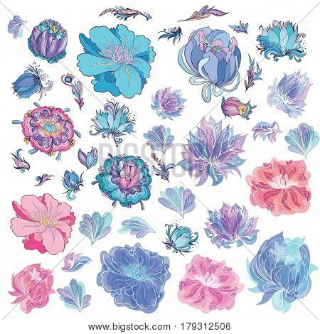 Romantic elegant creative floral design elements in indigo blue and pink colors