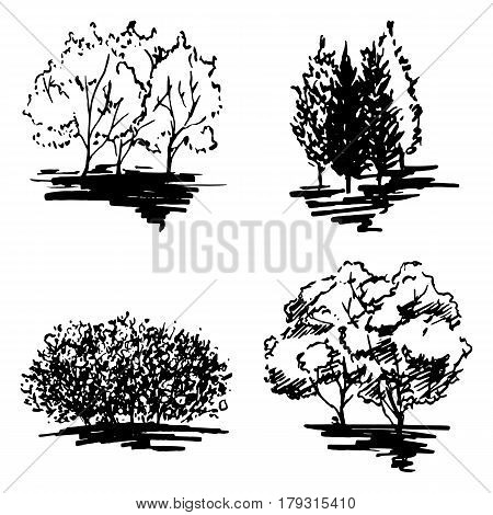Monochrome tree silhouette sketched line art set isolated vector