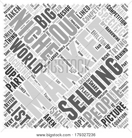 What Niche Marketing is Not Word Cloud Concept