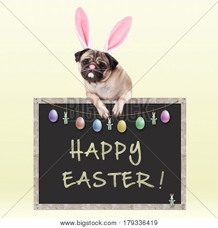cute pug puppy dog with bunny ears diadem hanging with paws on chalkboard sign with text happy easter and decoration on bright yellow background