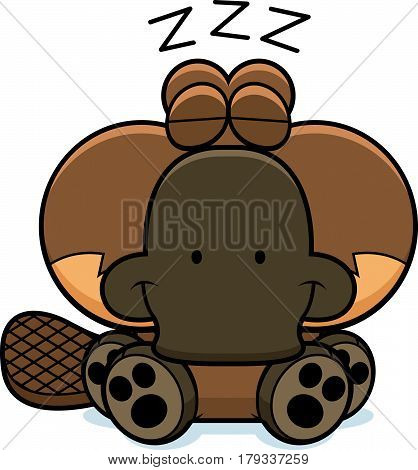Cartoon Platypus Napping