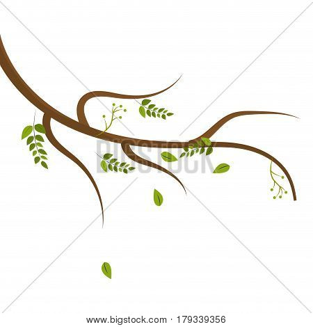 cute plant branch decoration, vector illustration design