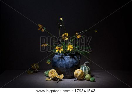 Still Life With Pumpkins On A Black Background: Flowers On Long Green Stems In Old Clay Jug And Brok