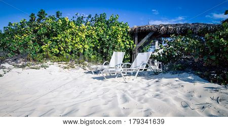 Chairs on the beach on Turks and Caicos Islands poster