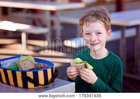 beautiful positive schoolboy enjoying healthy lunch during recess outdoor