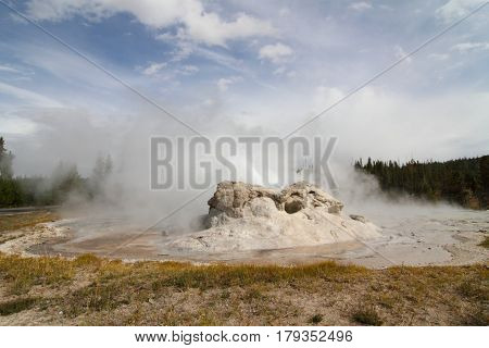 Grotto Geyser in Yellowstone National Park in Wyoming