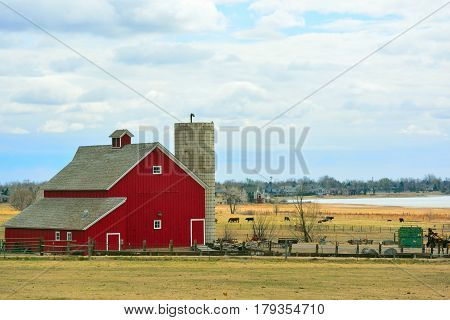 Red Barn with Cows and Encroaching Suburban Homes and Condominiums in the Background