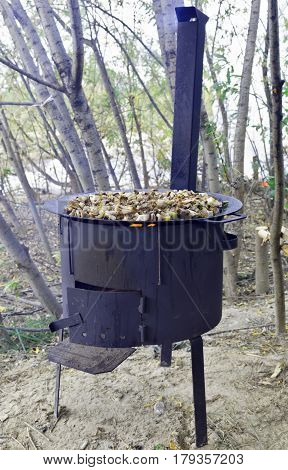 Frying wild mushrooms in the field on the stove