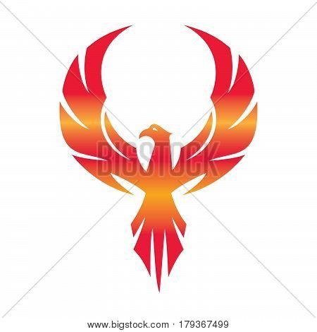 Stylized graphic phoenix bird flying with expanded wings logo template, vector illustration isolated on white background. Phoenix bird logotype template, freedom, development, creativity concept.