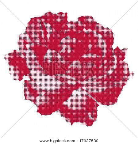Vector rose halftone