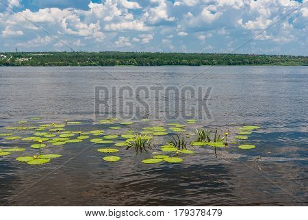 Peaceful landscape on a Dnepr river at June Ukraine