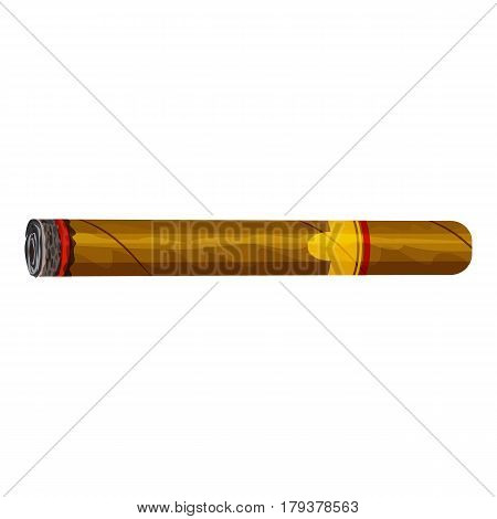 Cigar icon. Cartoon illustration of cigar vector icon for web