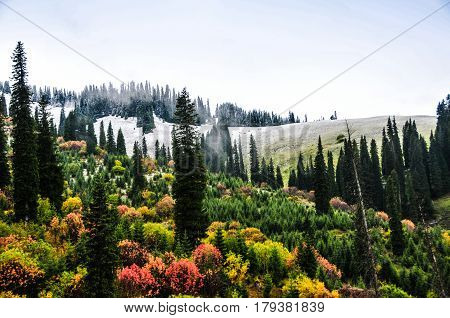 Tianshan is one of the seven wonders of the world mountains, the East and West Tianshan mountains across China, Kazakhstan, Kyrgyzstan and Uzbekistan Shikoku, Tianshan is the world's largest and most magnificent mountains.