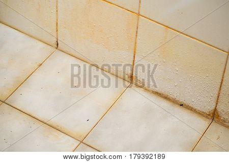 Dirt in the bathroom. Pile Up. Disease.