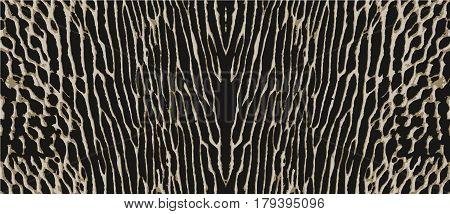 snake skin, pattern texture wild animal skin