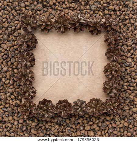 Frame of small cones and acorns in the form of a square