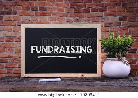 Fundraising Word On Blackboard With Green Plant.