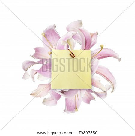 A piece of paper to post on a bouquet of pink lilies with a place to place your text