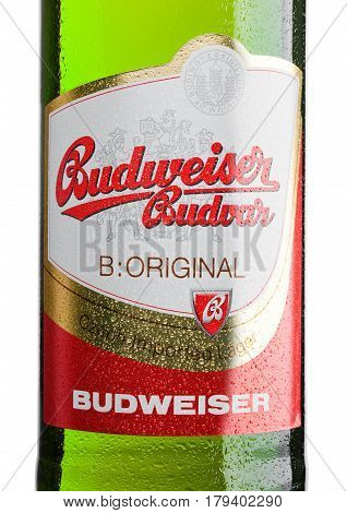 London,uk - March 30, 2017 : Bottle  Labelof  Budweiser Budvar Beer On White, One Of The Highest Sel